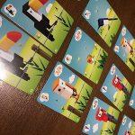 一風変わった鳥たちを巣へと導け!カードゲーム キューバード(CuBirds)
